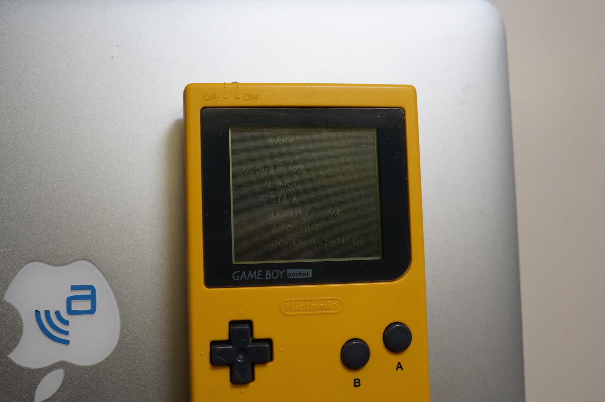 DSC09933
