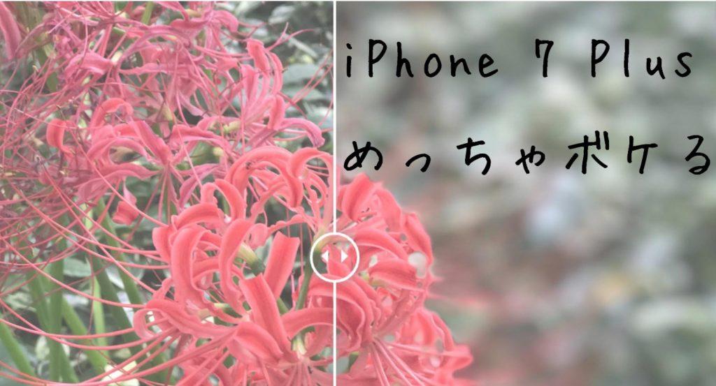 【iPhone 7 Plusカメラ】ボケ味が美しい「ポートレート」レビュー。作例13枚の比較、失敗し易いシーンなど