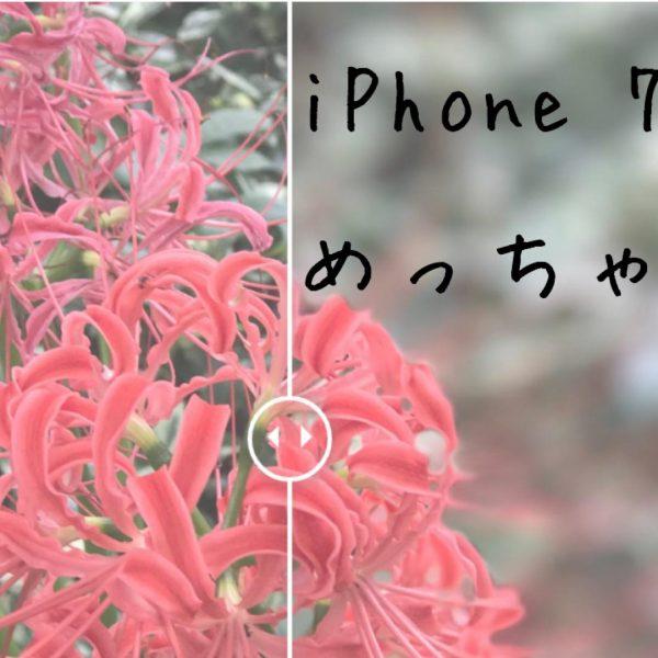 iphone7plus-depth-of-field23