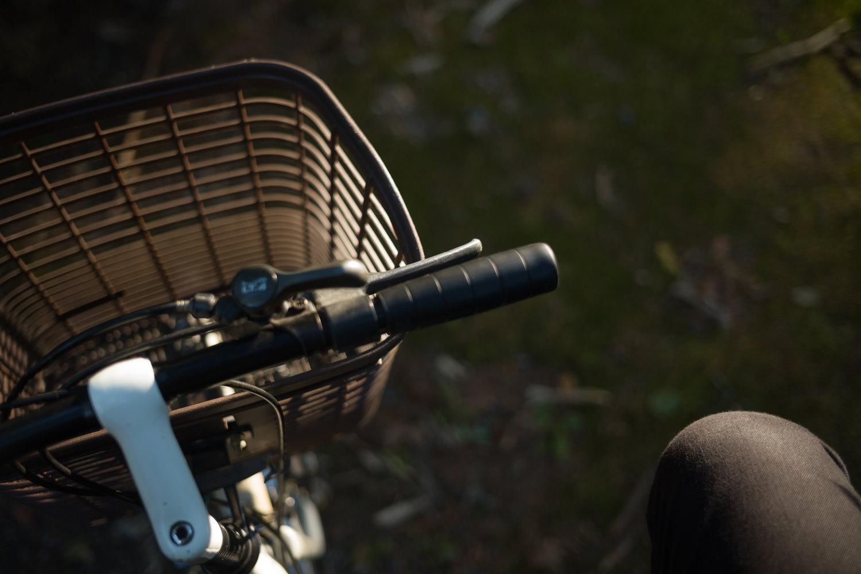 Leica M10 + Summicron f2/35mm ASPH. の作例10